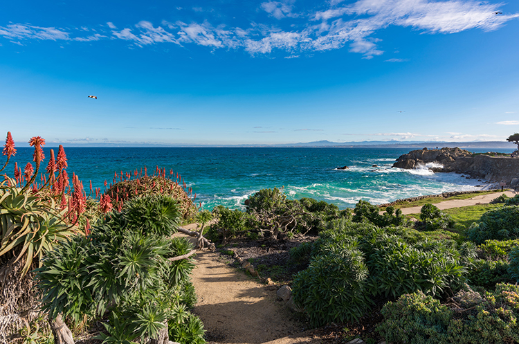 Indulge Your Love of the Sea in Monterey